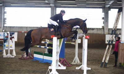 For sale show jumping schoolmaster!!