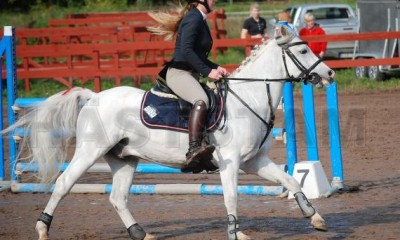 Competition's pony