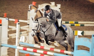 Adriana - 6 y.o. mare for showjumping.