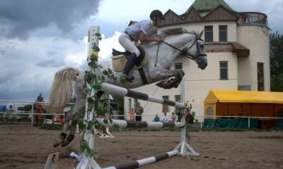 The best HORSE for children